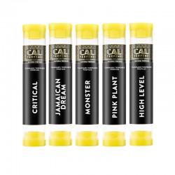 Pack of terpenes Pinene 2 - Cali Terpenes