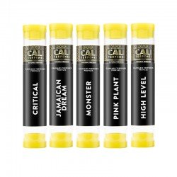 Pack of terpenes Pinene 2 - Cali Terpenes