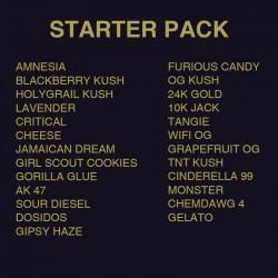 Pack terpenos Starter