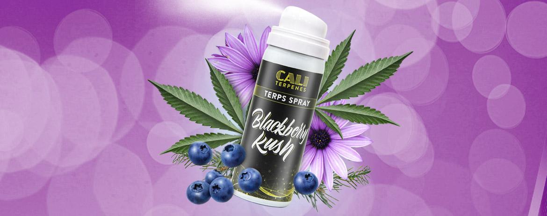 Terps Spray Blackberry Kush